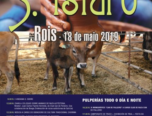 FERIA DE SAN ISIDRO EN ROIS
